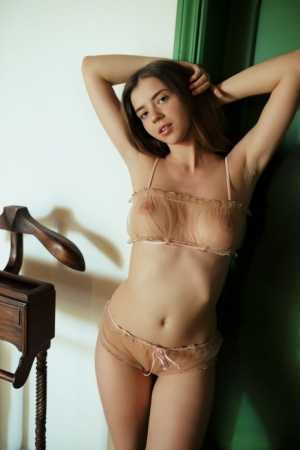 Small Tits Lingerie Porn
